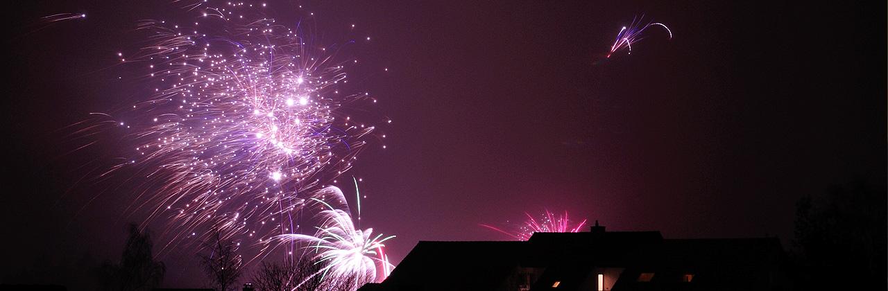 Meerschweinchen an Silvester / Feuerwerk